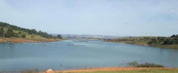 Sitio Na Beira Do Lago De Furnas , Guapé Mg, Bacia Do Rio Grande , 120.000 M2, Apenas 03 Klm De Guapé. - 897