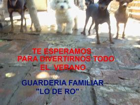 Guardería Canina Familiar ***lo De Ro ***rosana**