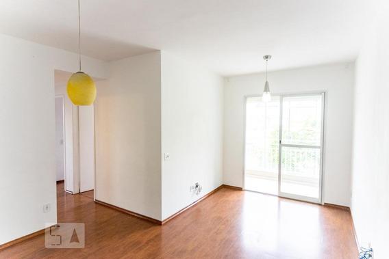 Apartamento Para Aluguel - Vila Aricanduva, 3 Quartos, 64 - 892991532