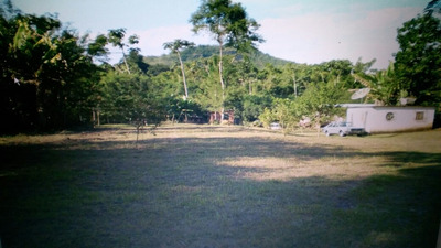 Área Plana 10mil M² Galpão Casa Ônibus Porta