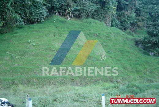 Haciendas - Fincas En Venta, La Azulita