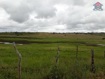 Fazendas À Venda Em Correntes/pe - Compre O Seu Fazendas Aqui! - 1419259
