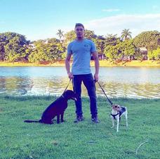 Adestramento De Cães A Domicilio