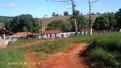 Fazenda - Imóvel Rural, Passos, Passos - 17609v