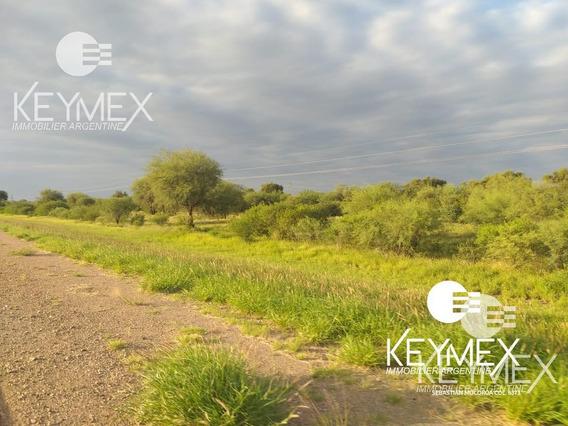 Campo Mixto - Agrícola - Ganadero - Parque Eólico - Chamical - La Rioja