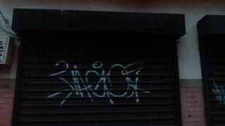 Puerta Santa Maria 2,43ancho .x 2,48 De Alto