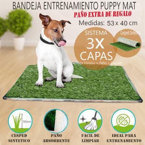 Bandeja Sanitaria Baño Mascotas Pet Cesped Perros 53 X 40