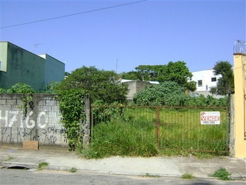 Imagem 1 de 8 de Terreno - Venda - Colônia - Cod. 34 - V34