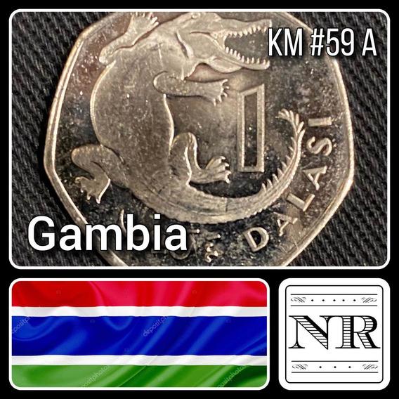 Gambia - 1 Dalasi - Año 2011 - Cocodrilo - Africa - Km #59a