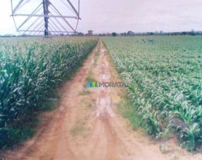 Fazenda - 5300 Ha - Brasilândia De Minas (mg) - Codigo: Fa0131 - Fa0131