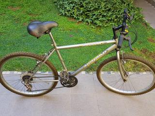 Bicicleta Dolphin Magnum R26
