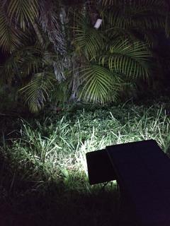 Lampara Solar Con Estaca Luz Led Ilumina Jardin Arbol Planta