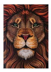 Bíblia Leão Aslam Nárnia - Flecha - Jesus Copy
