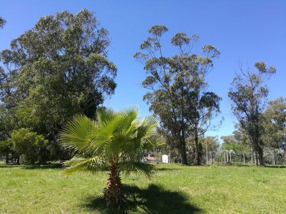 Terreno Barato Financiable En Barrio Privado Canelones - A3