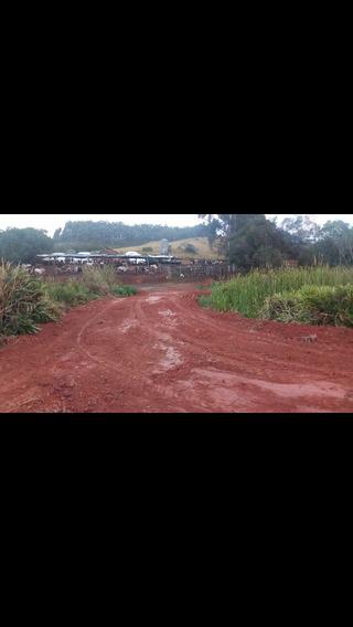 Fazenda Em São Pedro Da União ¿mg¿