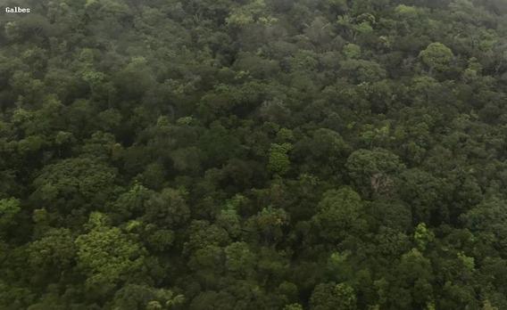 Fazenda Para Venda Em Novo Aripuanã, (zona Leste) - 2000/2822_1-1425105