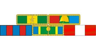 Placa Com 5 Barretas De Medalhas - Fixação Por Imã