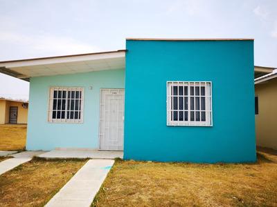 Casa Para Arrendar Penonome