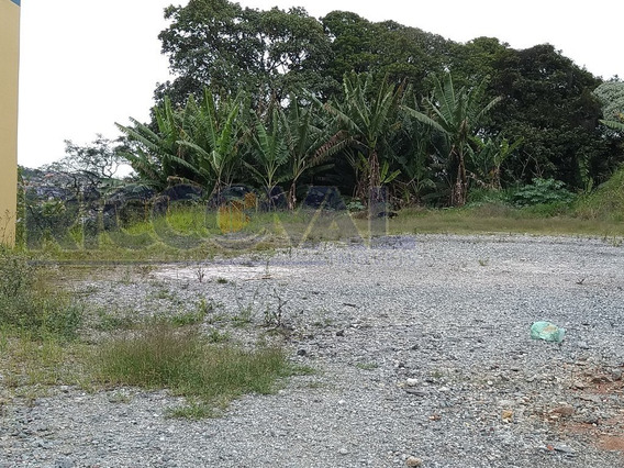 Terreno Para Venda - 3541