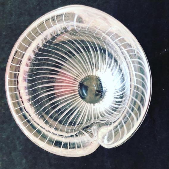 Vidrio Artistico Tapio Wirkkala Decoración Bowl Vaso Firmado