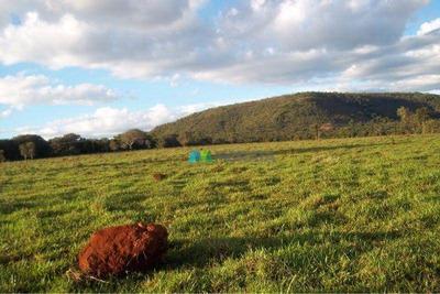 Fazenda - 50 Ha - Região Felixlândia (mg) - Codigo: Fa0108 - Fa0108