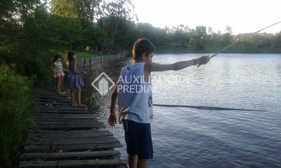 Chacara/fazenda/sitio - Centro - Ref: 249698 - V-249698