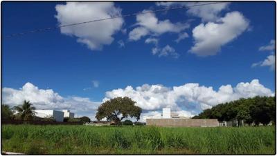 Terreno Em Plano Diretor Norte, Palmas/to De 1272m² À Venda Por R$ 161.000,00 - Te95469