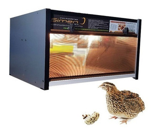 Incubadora Simen Automatica Mod Raster Codorniz Y Aves