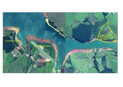 Fazenda 6 Alqueires Paulista, 650 Metros Frente Ao Lago De Furnas Em Guapé/mg - Pego Carro Ou Moto Até R$ 60.000,00 - Fa0004