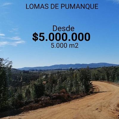 Parcelas Lomas De Pumanque