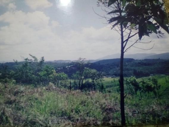 Lindo Terreno Residencial / Comercial - No Asfalto.