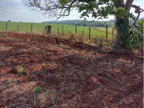 Imagem 1 de 11 de Chácara 4,5 Alqueires Sem Casa,terra Vermelha,ótimo P/plantio De Grama,soja,milho,localização Nobre,fácil Acesso,5 Kms Do Centro De Quadra Sp - Ch00080 - 69505612