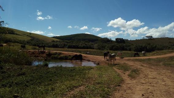 Sítio Em Aiuruoca Com 61,7 Ha , Próximo Da Rodovia , Muito Bom De Água ,curral Completo , Terreno Ótimo Para Plantio De Oliveira. - 351