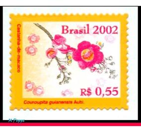 Ver Desconto - 814 2002 Castanha De Macaco - Flores