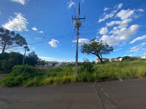 Imagem 1 de 2 de Terreno À Venda, 518 M² Por R$ 550.000,00 - Estrela - Ponta Grossa/pr - Te0217