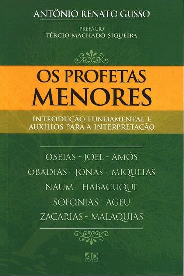 Livro Os Profetas Menores
