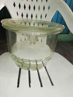 Desecador Campana Veloflujo 250mm Pyrex Placa Porcelana