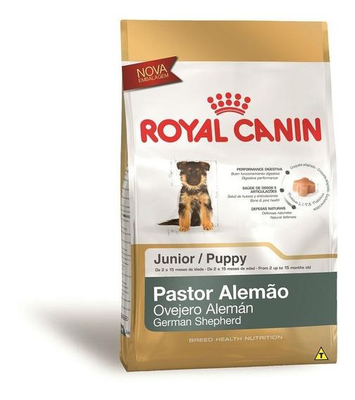 Ração Royal Canin Junior Pastor Alemão Cães Filhotes 12 Kg