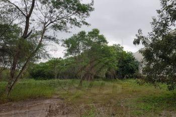 Terreno En Renta En Rincón Del Oriente, Monterrey