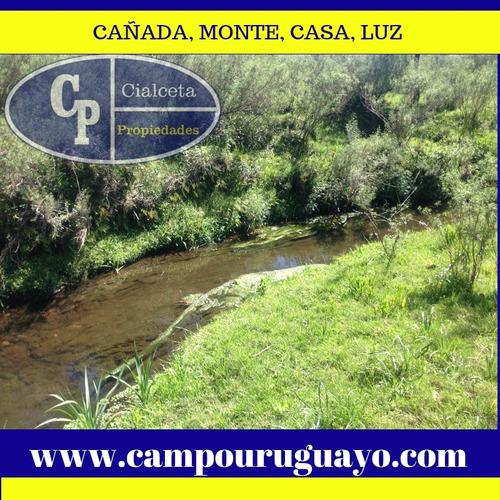 44 Hectáreas En Canelones, Con Monte Y Parte Agrícola