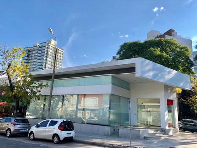 Importante Local Comercial En Alquiler En Punta Carretas
