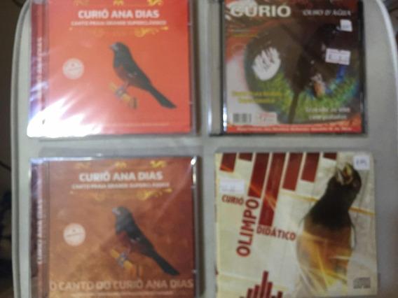 DE CD BAIXAR VITETEU CANTO CURIO