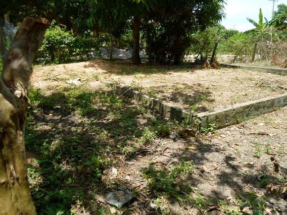 Ótimos Terrenos De Frente Para Avenida, Bem Localizados - Qgt508