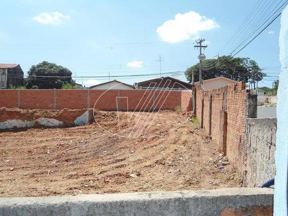 Terreno Para Aluguel Em Jardim Pauliceia - Te224830