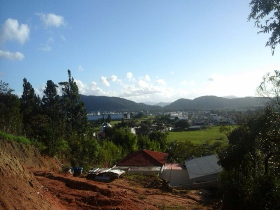 Chácara/ Sitio Em Balneário Camboriú - T156 - 4853294