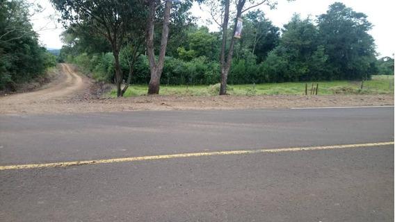 Chacra En Misiones, A 30 Mts Ruta 3 ,para Limon , Palta, Etc