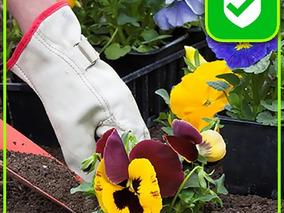 Jardineria,limpieza,de Terrenos Parques Paisajismo Poda Tala