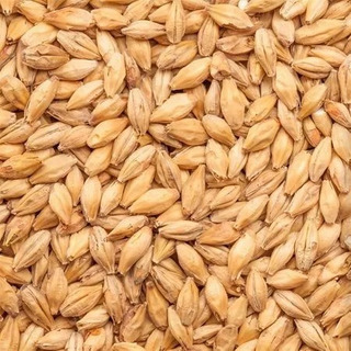 Malte Pilsen Cargill - Importado 5 Kg Fracionado