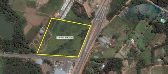 Área À Venda, 32000 M² - Chácara Lagoa Branca - Campo Limpo Paulista/sp - Ar0057