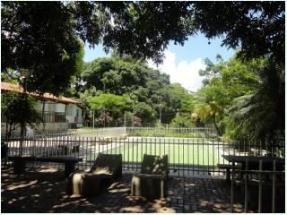 Terreno / Área Com 8 Quartos Para Comprar No Santa Amélia Em Belo Horizonte/mg - 2553